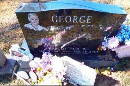 GEORGE, HAROLD - Gallia County, Ohio   HAROLD GEORGE - Ohio Gravestone Photos
