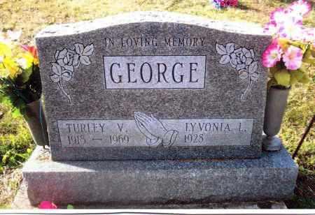 GEORGE, TURLEY - Gallia County, Ohio | TURLEY GEORGE - Ohio Gravestone Photos