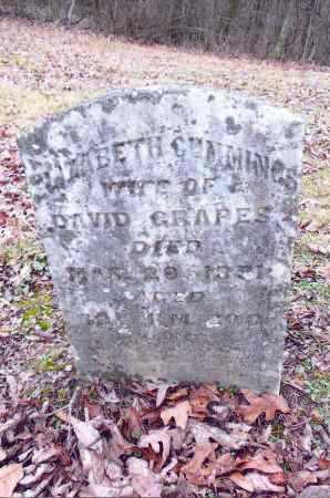 GRAPES, ELIZABETH - Gallia County, Ohio | ELIZABETH GRAPES - Ohio Gravestone Photos