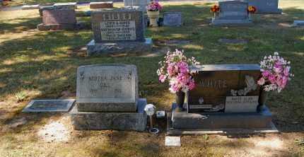 GRAVEL HILL, OVERVIEW #4 - Gallia County, Ohio   OVERVIEW #4 GRAVEL HILL - Ohio Gravestone Photos