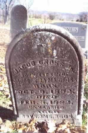 GROSS, JACOB - Gallia County, Ohio   JACOB GROSS - Ohio Gravestone Photos