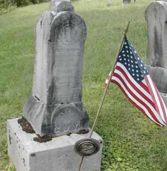 GUY, ALVA - Gallia County, Ohio   ALVA GUY - Ohio Gravestone Photos