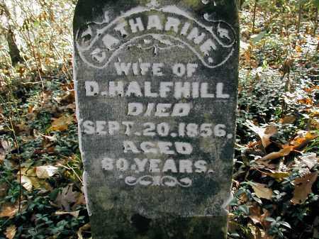 HALFHILL, CATHERINE - Gallia County, Ohio   CATHERINE HALFHILL - Ohio Gravestone Photos