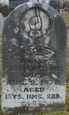 HALFHILL, FRANCES - Gallia County, Ohio   FRANCES HALFHILL - Ohio Gravestone Photos