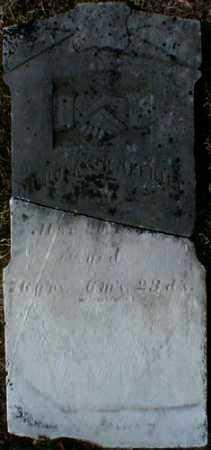 HALFHILL, NICOLAS - Gallia County, Ohio | NICOLAS HALFHILL - Ohio Gravestone Photos