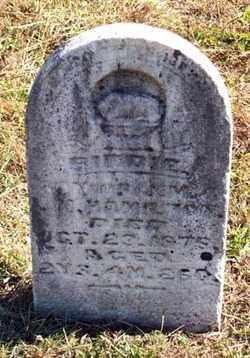 HAMILTON, BIRDIE - Gallia County, Ohio   BIRDIE HAMILTON - Ohio Gravestone Photos
