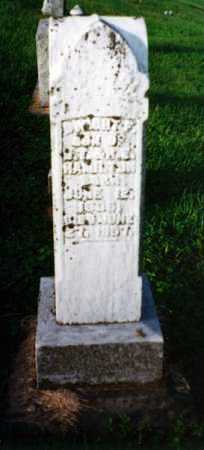 HAMILTON, DWIGHT FREDERICK - Gallia County, Ohio | DWIGHT FREDERICK HAMILTON - Ohio Gravestone Photos