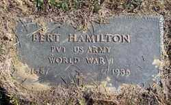 HAMILTON, JAMES BERT - Gallia County, Ohio | JAMES BERT HAMILTON - Ohio Gravestone Photos