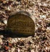 HESS, WILLIE - Gallia County, Ohio | WILLIE HESS - Ohio Gravestone Photos