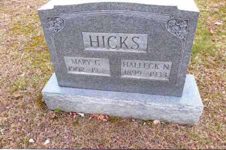 HICKS, HALLECK - Gallia County, Ohio | HALLECK HICKS - Ohio Gravestone Photos