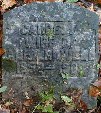 HOWELL, CARDELIA - Gallia County, Ohio | CARDELIA HOWELL - Ohio Gravestone Photos