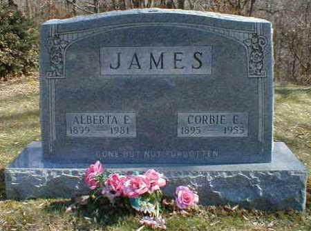 LEMLEY JAMES, ALBERTA - Gallia County, Ohio | ALBERTA LEMLEY JAMES - Ohio Gravestone Photos