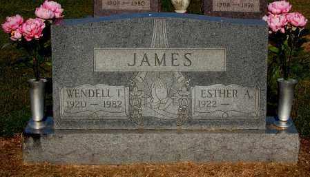 JAMES, ESTHER A - Gallia County, Ohio | ESTHER A JAMES - Ohio Gravestone Photos