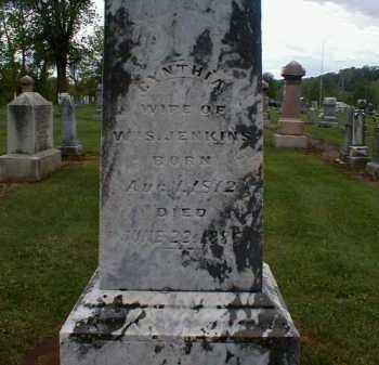 SCOTT JENKINS, CYNTHIA - Gallia County, Ohio   CYNTHIA SCOTT JENKINS - Ohio Gravestone Photos