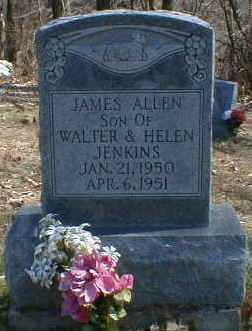 JENKINS, JAMES - Gallia County, Ohio | JAMES JENKINS - Ohio Gravestone Photos