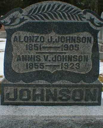 JOHNSON, ALONZO - Gallia County, Ohio | ALONZO JOHNSON - Ohio Gravestone Photos