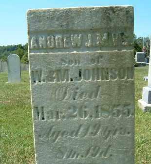 JOHNSON, ANDREW JAMES - Gallia County, Ohio | ANDREW JAMES JOHNSON - Ohio Gravestone Photos