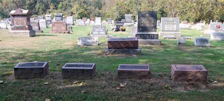 JOHNSTON, FAMILY SECTION - Gallia County, Ohio | FAMILY SECTION JOHNSTON - Ohio Gravestone Photos