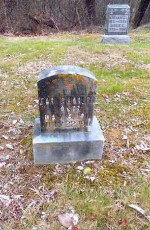 JONES, HARLEN - Gallia County, Ohio | HARLEN JONES - Ohio Gravestone Photos