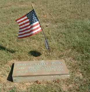 JONES, MERLIN WESLEY - Gallia County, Ohio | MERLIN WESLEY JONES - Ohio Gravestone Photos