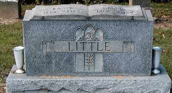 FRASIER LITTLE, NELLIE - Gallia County, Ohio | NELLIE FRASIER LITTLE - Ohio Gravestone Photos