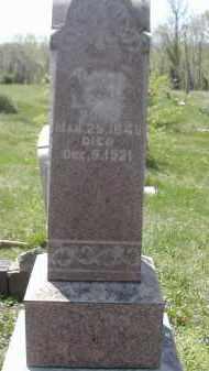 LUTZ, MARY - Gallia County, Ohio   MARY LUTZ - Ohio Gravestone Photos