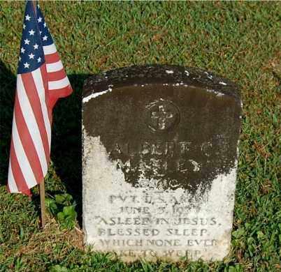 MANLEY, ALBERT C - Gallia County, Ohio | ALBERT C MANLEY - Ohio Gravestone Photos