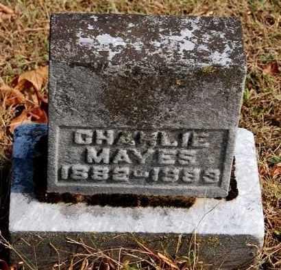 MAYES, CHARLIE - Gallia County, Ohio | CHARLIE MAYES - Ohio Gravestone Photos