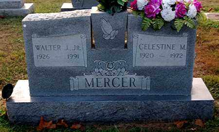 MERCER, CELESTINE M. - Gallia County, Ohio | CELESTINE M. MERCER - Ohio Gravestone Photos