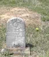 MILLER, INFANT - Gallia County, Ohio | INFANT MILLER - Ohio Gravestone Photos