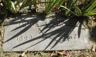 MILLER, JACOB - Gallia County, Ohio | JACOB MILLER - Ohio Gravestone Photos