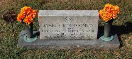 MONTGOMERY, JAMES P. - Gallia County, Ohio | JAMES P. MONTGOMERY - Ohio Gravestone Photos