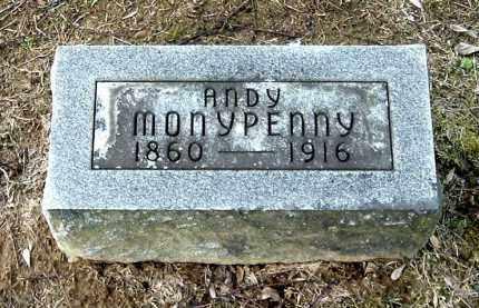 MONYPENNY, ANDY - Gallia County, Ohio | ANDY MONYPENNY - Ohio Gravestone Photos