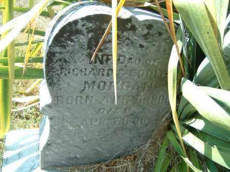 MORGAN, INFANT DAU. - Gallia County, Ohio | INFANT DAU. MORGAN - Ohio Gravestone Photos