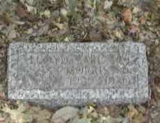 MORRIS, LLOYD - Gallia County, Ohio | LLOYD MORRIS - Ohio Gravestone Photos