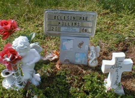 MULLINS, ALLISON - Gallia County, Ohio | ALLISON MULLINS - Ohio Gravestone Photos