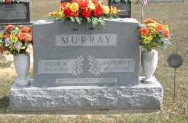MURRAY, ANTHONY - Gallia County, Ohio | ANTHONY MURRAY - Ohio Gravestone Photos
