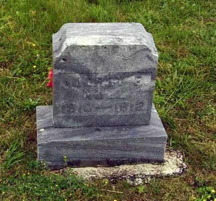 NULL, AUDREY B. - Gallia County, Ohio | AUDREY B. NULL - Ohio Gravestone Photos