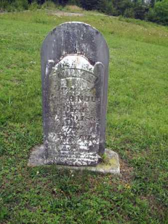 NULL, EMILY - Gallia County, Ohio | EMILY NULL - Ohio Gravestone Photos