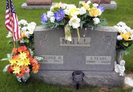 NULL, GEORGE - Gallia County, Ohio | GEORGE NULL - Ohio Gravestone Photos