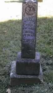 PINNEY, NILES - Gallia County, Ohio   NILES PINNEY - Ohio Gravestone Photos
