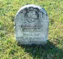 PROSE, INFANT DAUGHTER - Gallia County, Ohio | INFANT DAUGHTER PROSE - Ohio Gravestone Photos