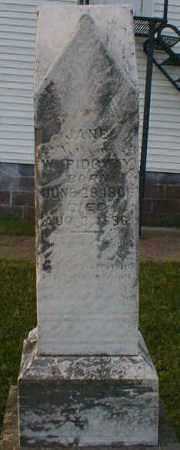 RIDGWAY, JANE - Gallia County, Ohio | JANE RIDGWAY - Ohio Gravestone Photos