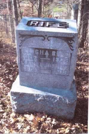 RIFE, MARY LUCILLE - Gallia County, Ohio | MARY LUCILLE RIFE - Ohio Gravestone Photos