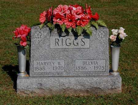 RIGGS, HARVEY B - Gallia County, Ohio | HARVEY B RIGGS - Ohio Gravestone Photos