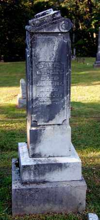 RIPLEY, DAVID - Gallia County, Ohio   DAVID RIPLEY - Ohio Gravestone Photos