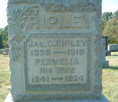 RIPLEY, JAS - Gallia County, Ohio | JAS RIPLEY - Ohio Gravestone Photos