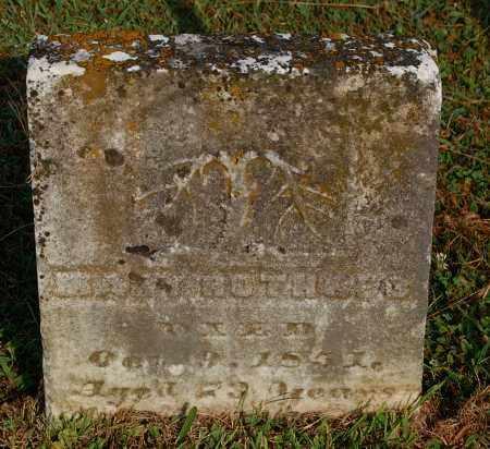 ROTHGEB, MARY - Gallia County, Ohio   MARY ROTHGEB - Ohio Gravestone Photos