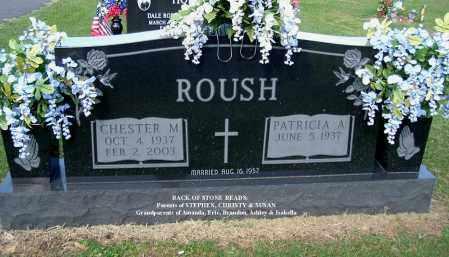 ROUSH, CHESTER M - Gallia County, Ohio   CHESTER M ROUSH - Ohio Gravestone Photos