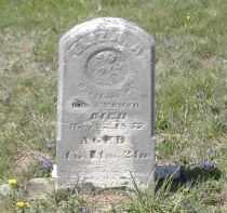 ROUSH, ELIZA - Gallia County, Ohio | ELIZA ROUSH - Ohio Gravestone Photos